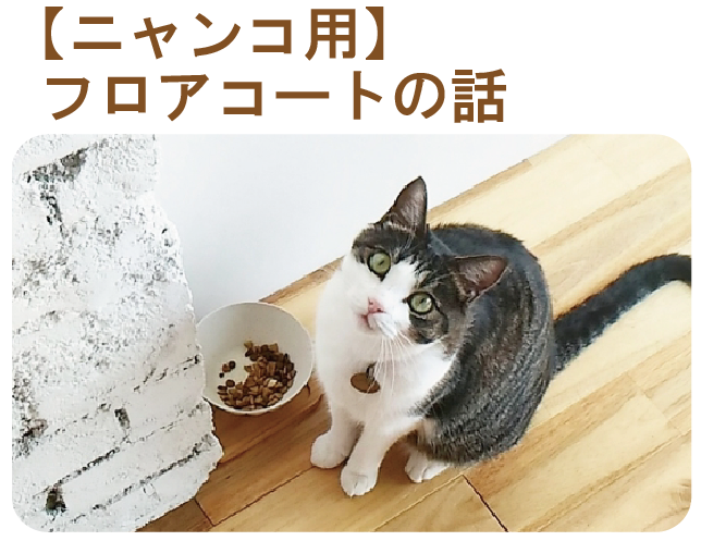 猫用のフロアコート