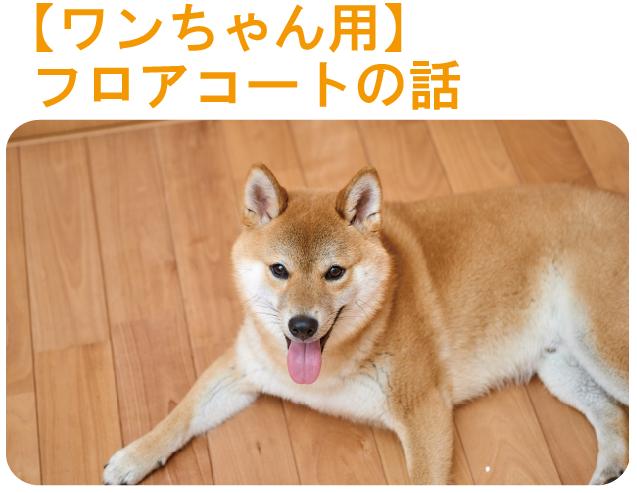 犬用のフロアコート